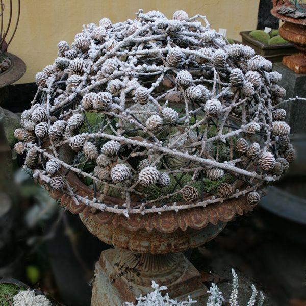Lærkekogler i frostvejr