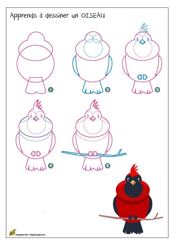 17 best images about apprendre dessiner on pinterest animaux how to draw and mice - Oiseau a dessiner ...