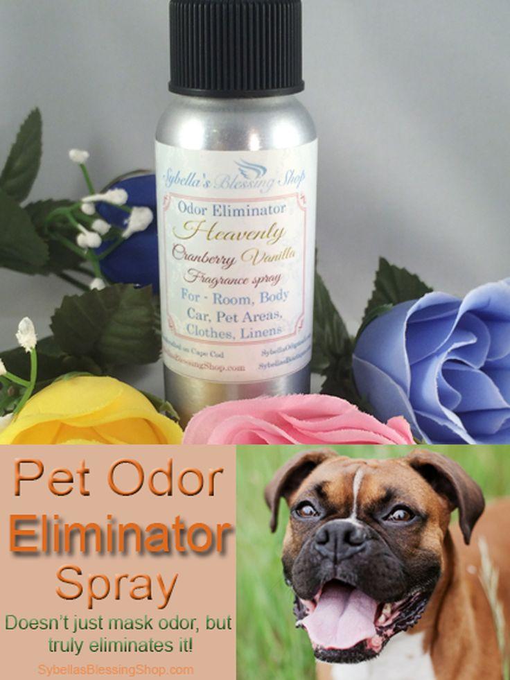 Best 25 Pet Odor Eliminator Ideas On Pinterest