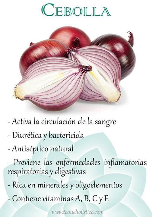 Activa la circulación de la sangre; diurética y bactericida; antiséptico natural; previene las enfermedades inflamatorias respiratorias y digestivas; rica en minerales y oligoelementos; contiene vitaminas A, B, C y E.