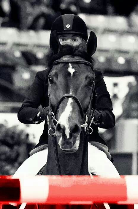 I love riding when its a summer day and stormy..always my best rides...Im off to do just that, what a wonderful way to spend a festive evening with family friends and my steeds!! Cheers! XO I also love this picture as you can see the focus on both the horse and riders faces