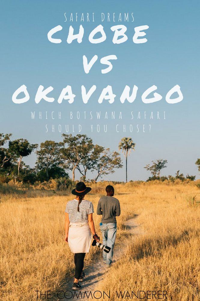 Chobe National Park vs The Okavango Delta -  the ultimate battle for the title of 'best Botswana safari'.    Who will win this epic duel? Read on to find out!  -  Botswana  Chobe National Park  Okavango Delta  African Safari  Safari