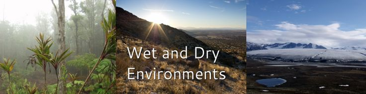 Wet and Dry Environments