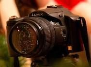 christmas photography ideas - Google Search