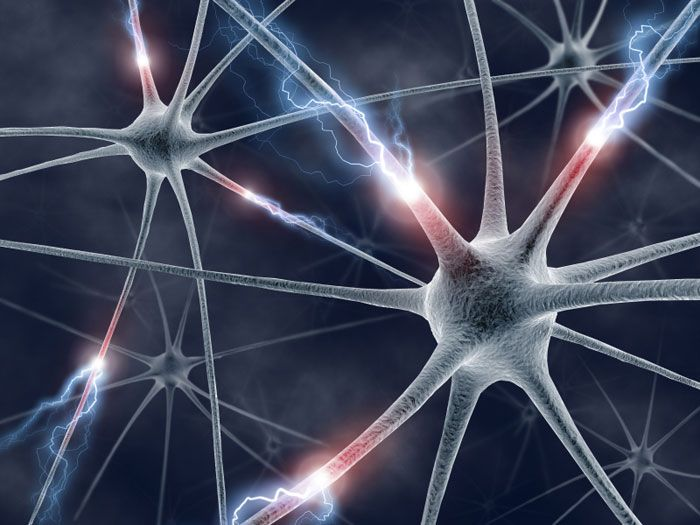 """An artist's impression of neurons showing information, such as sensory inputs, zipping along the neural """"spike trains"""" in the brain. (Courtesy: iStockphoto.com/ktsimage)"""