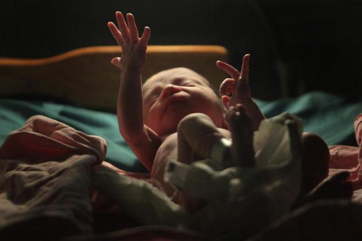 #Estudios prenatales: cómo detectar las enfermedades congénitas - La Gaceta Tucumán: La Gaceta Tucumán Estudios prenatales: cómo detectar…