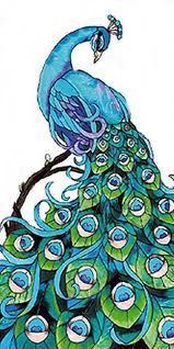 Peacock: Tattoo Ideas, Art Nouveau, Stainglass, Glasses Art, Birds, Peacocks Tattoo, Drawing, Peacocks Stained, Stained Glasses