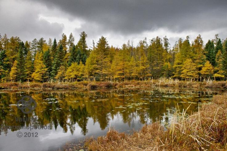 More Fall Reflections    www.facebook.com/vasphotoca