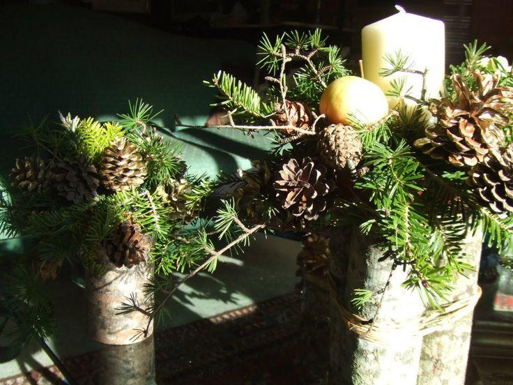 Composizioni di fiori invernali: fiori per bouquet, addobbi per matrimoni, centrotavola natalizi. Ogni occasione ha il fiore giusto per rappresentarla.