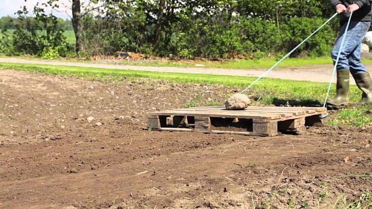 Græs: Sådan anlægger du ny græsplæne