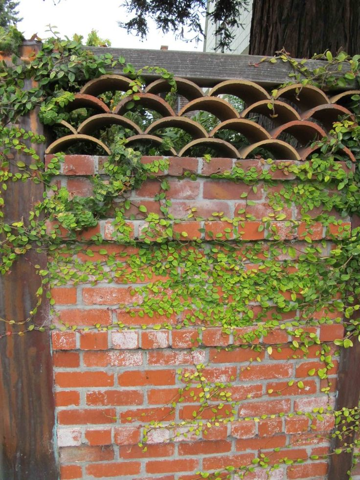 42 Best Images About Brick Walls On Pinterest Gardens