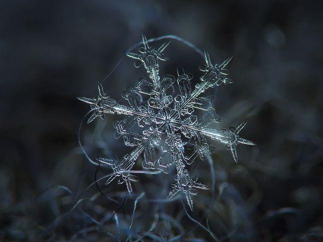 Flocons de neige   macrophotographie Photo