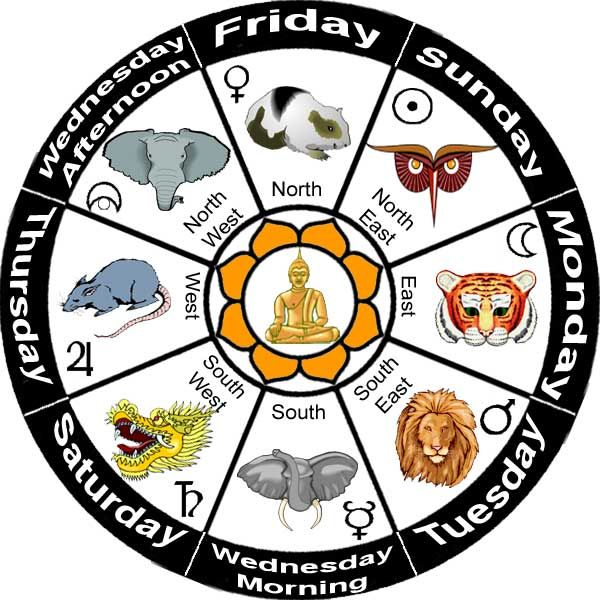 98 best Signs of the Zodiac...What's yours? images on Pinterest ...