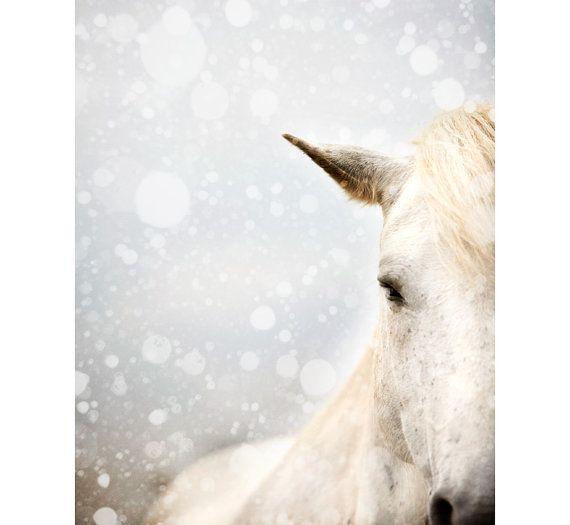 Winter Mare - Horse Photography, Winter, Snow, Animal, Fine Art Print, Snowflakes, Muted Minimal Wall Art