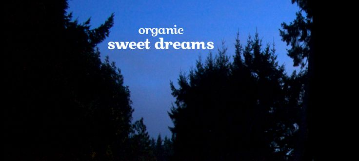 Sweet Dreams (organic) by DavidsTea