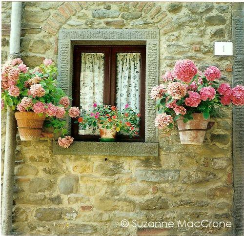 Cottage Window ~ Cortona, Italy ~ Original Colour Photograph by Suzanne MacCrone