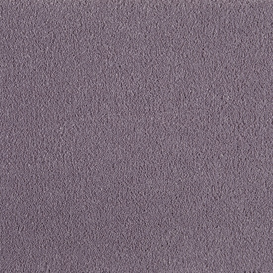 Redbook Total 'Total Supreme' carpet in colour 2/- Hibiscus completes the GLAMOROUS look  #purple #carpet