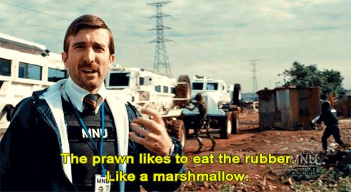 All of his dialogue in District 9 was improvised. | 10 Things You Didn't Know About Sharlto Copley