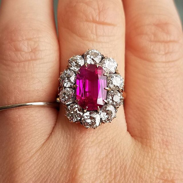 Jogani Beverly Hills Ruby 3.13 Oval Burma NH AG A perfect pop of color for this holiday season.