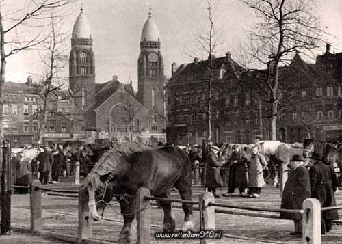 Rotterdam - Veemarkt