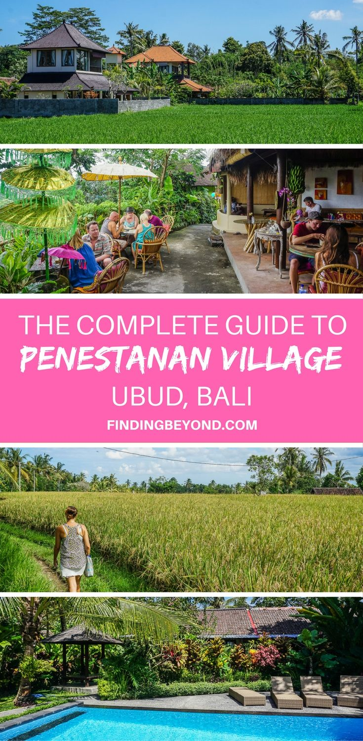 In this complete guide to Penestanan Village, Ubud, we provide the information you need including local areas, sights, restaurants, accommodation & more! #digitalnomad #expatlife #livinginBali #livingabroad #livinginubud | Penestanan | Rural Ubud | Village life in Ubud | Living with Locals | Best Places to stay in Ubud | Where to stay in Bali | Accommodation in Bali | Accommodation in Ubud | Where to eat in Bali | Where to eat in Ubud |