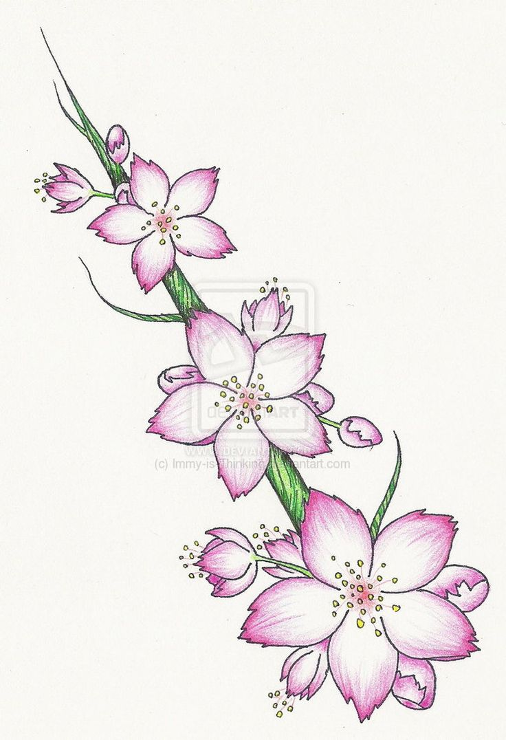 Cherry Blossom Tat 2 - Pink | Flower Tattoo By th06 ...