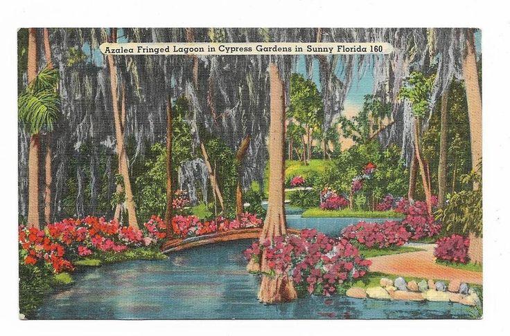 Vintage Florida Linen Postcard Cypress Gardens Azalea Fringed Lagoon
