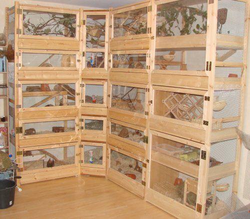 die 25 besten ideen zu rattenk fig auf pinterest chinchilla k fig frettchen k fig und degu. Black Bedroom Furniture Sets. Home Design Ideas