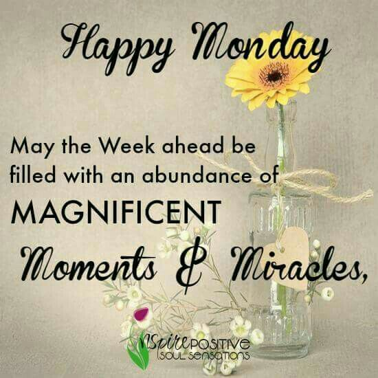 Funny Monday Quotes: 817 Best # Monday! Monday! Images On Pinterest