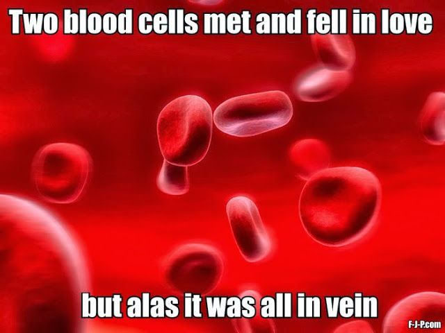 Funny biology joke