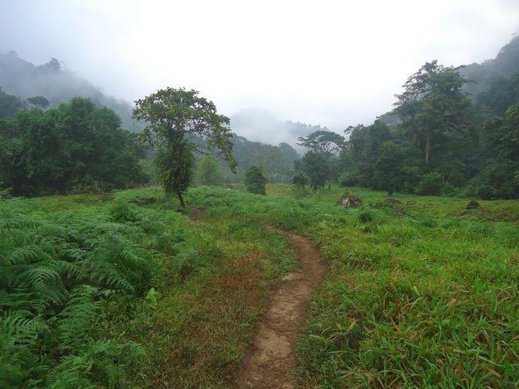 Colombia, Ciudad Perdida, Lost City trek, Day 4 | FILIP ZIOLKOWSKI :: Awakening On The Road
