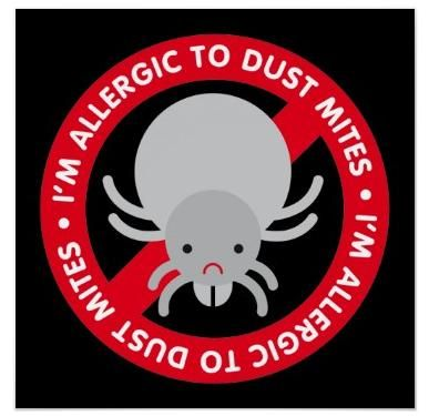 How to Control Dust Mite Allergy. im allergic to dust mites it sux