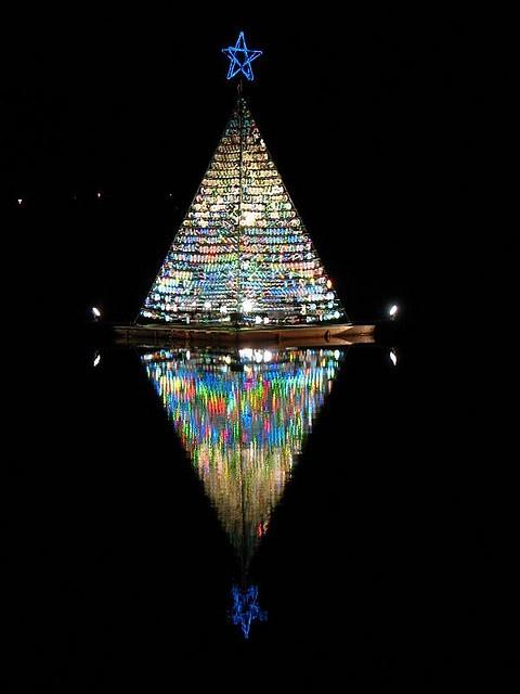 Tree of lights at Fairy Lake