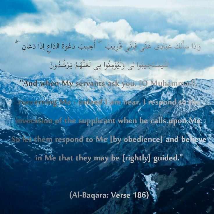 #verse #surah  #baqara  #beautiful #❤