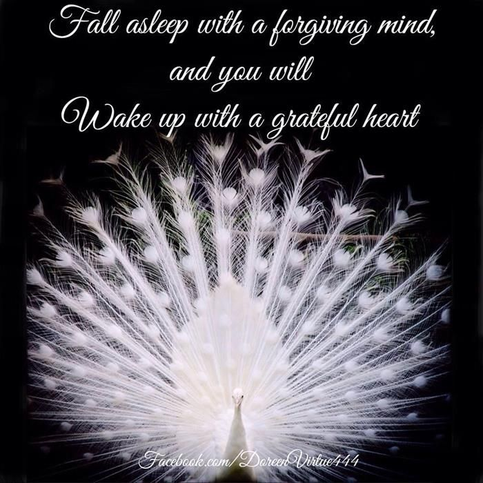 Fall asleep with a forgiving mind, and you will wake up with a grateful heart!!