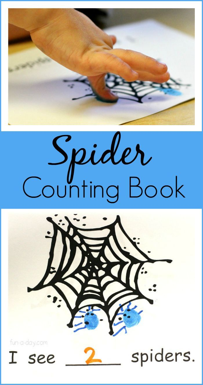 Hands-on math and literacy for Halloween with a Spider Counting Book!