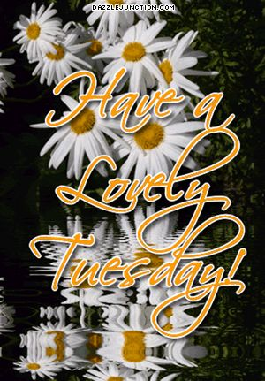 Have A Lovely Tuesday day gif tuesday tuesday quotes tuesday images tuesday quote images