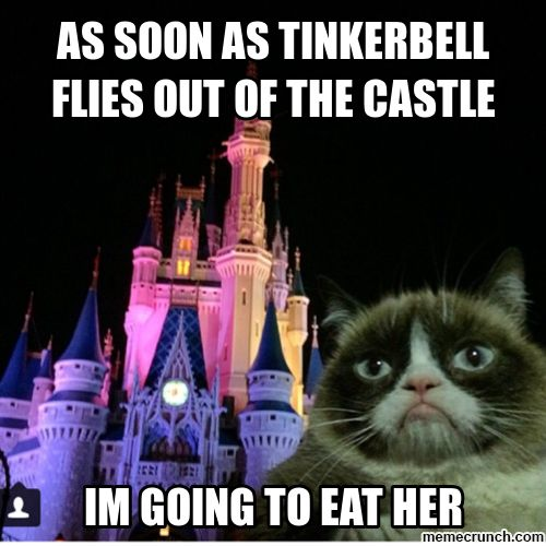 This one is especially hilarious b/c of an inside joke with my family about Disney hahahahahahaha Grumpy cat- posted by Candice Marie