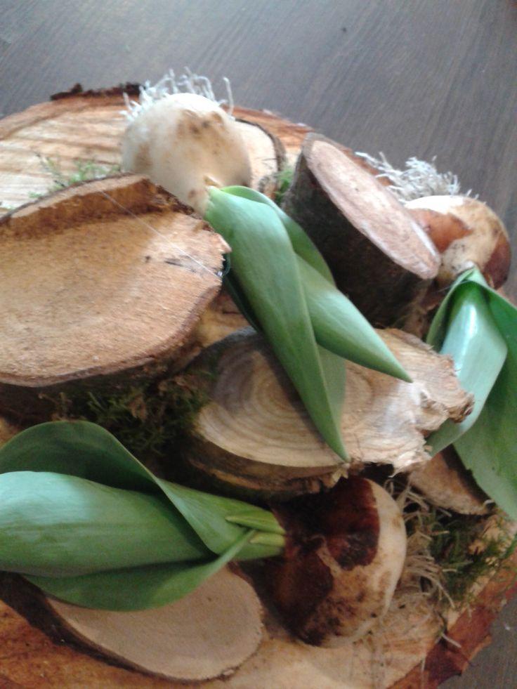 tulpenbollen op hout