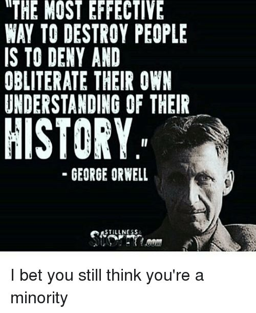 I Bet, Memes, and History: ITHE MOST EFFECTIVE   WAY TO DESTROY PEOPLE   IS TO DENY AND   OBLITERATE THEIR OWN   UNDERSTANDING OF THEIR   HISTORY   - GEORGE ORWELL   STILLNESS△  I bet you still think you're a minority