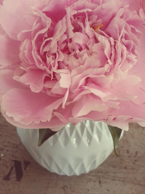 Pretty flowers in my Lenneke Wispelwey vase