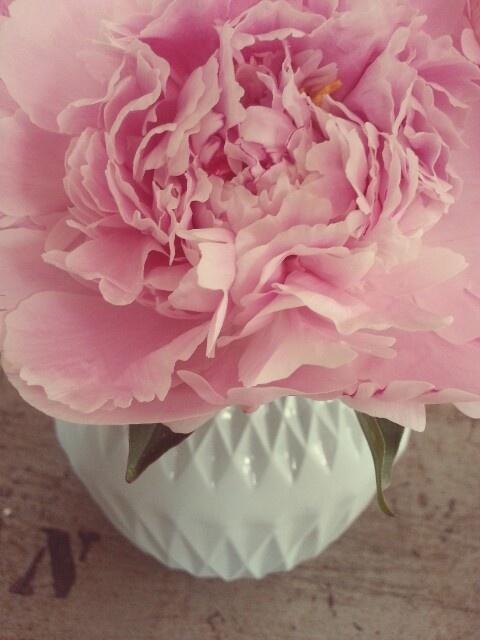 Pretty flowers in my Lenneke Wispelwey vase