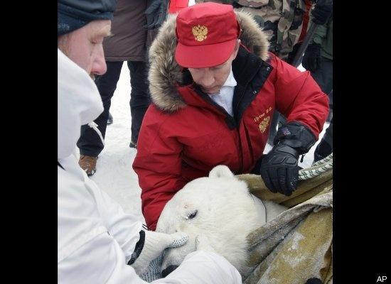 The Polar Bear Subduer/Scientist, April 2010