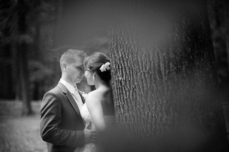 Wedding photography - romantic shots