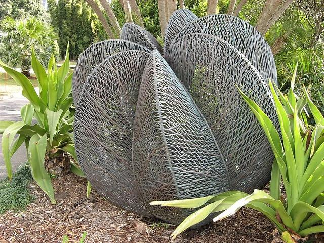 Royal Botanic Gardens, Sydney by Bronwyn Oliver