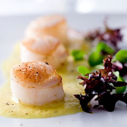 Recipes   Grilled Sea Scallops with Sweet Corn Coulis   Sur La Table