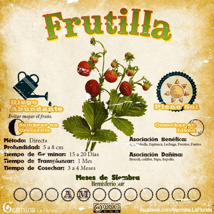Les traemos este útil calendario de las Siembras del mes de Abril, además de fichas con información específica de cada planta que podr...