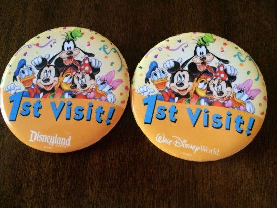 Are you planning your first visit to Walt Disney World? Here are 25 tips from Disney veterans to help you have the best trip possible.