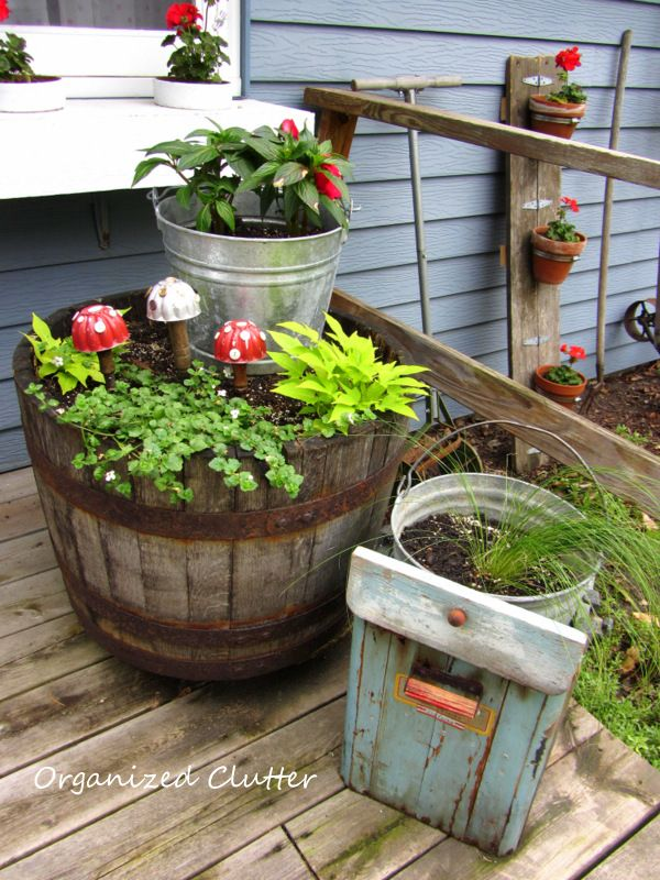 Best Container Gardening Images On Pinterest Flowers Pots