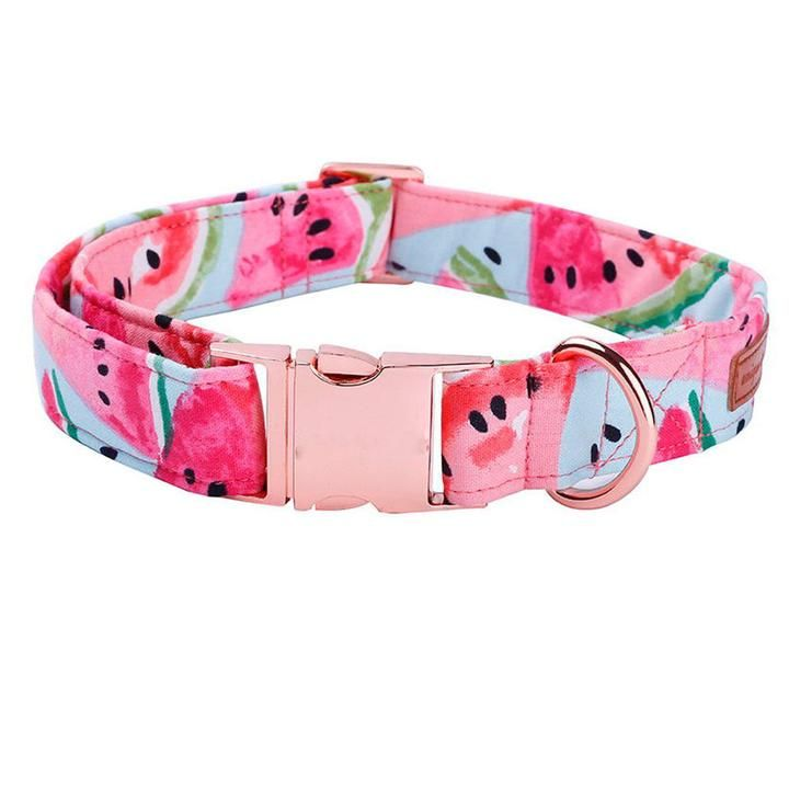 Pink Watermelon Print Dog Collar Bowtie With Rose Gold Buckle